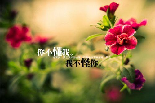 新五代史:列传·杂传第四十三